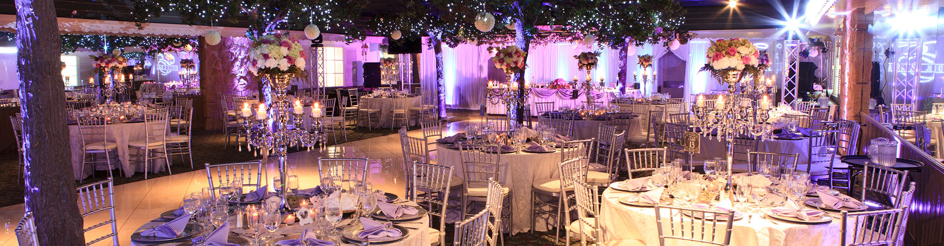 Millenium decorations catering banquet hall decorations chicago full width image junglespirit Choice Image